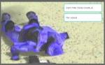 Halo 2 Image 5