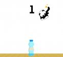 Jeu Bottle Flip 2