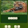Jeu Zoo Trivia