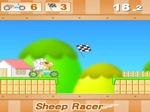 Jouer gratuitement à Sheep Racer