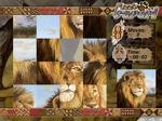 Jouer gratuitement à Puzzle Safari