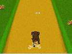 Jeu Dog Dash