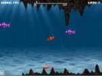 Jeu Franky Fish 2