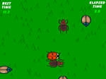 Jeu The Lady Bug