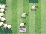 Jeu Sheep Reactions