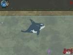 Jouer gratuitement à Killer Whale Willy