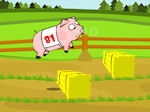 Jouer gratuitement à Course de cochons