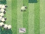 Jouer gratuitement à Troupeau de moutons
