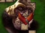 Jouer gratuitement à King Kong