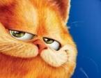 Jeu Garfield