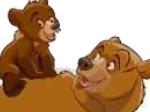 Jeu Frère des ours