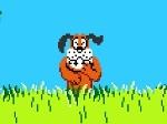 Jeu Chasser les canards