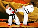 Jouer gratuitement à Compétition de Taekwondo