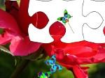 Jouer gratuitement à Royaume des fleurs