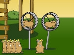 Jeu Flying hamsters