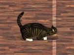 Jouer gratuitement à Cat Box Bowling